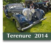 Terenure Car Show 2014 button